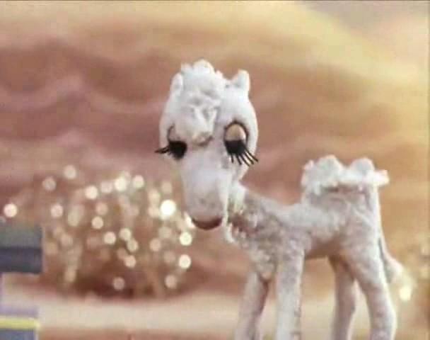 Белый верблюжонок